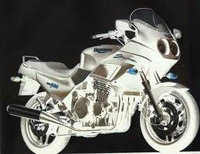 T300 Trophy Daytona Sprint Tiger